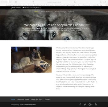 Caucasian Shepherds/Breeders